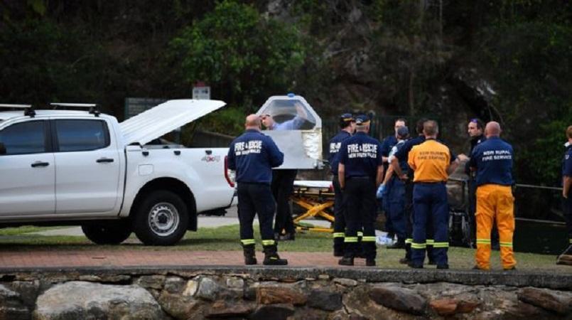 British CEO, family killed in Sydney plane crash