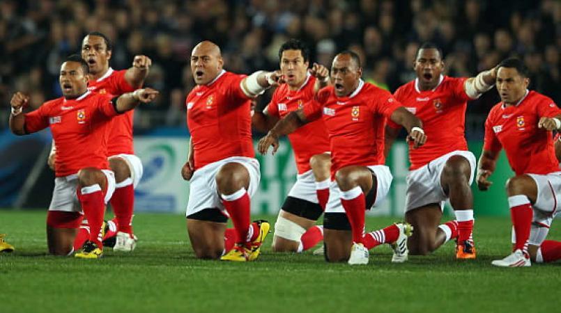 tonga rugby