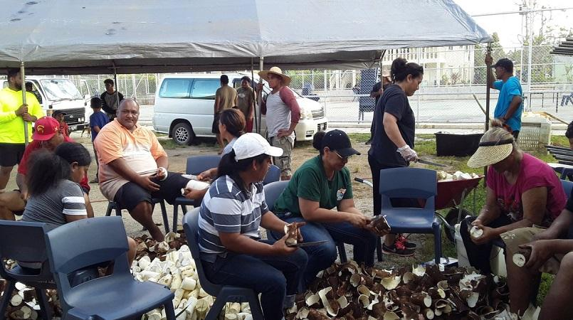 Tongans prepare for possible food shortage after cyclone